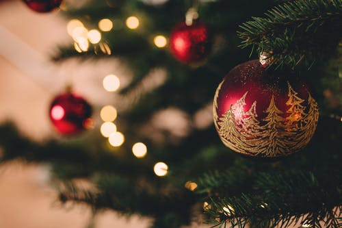 Christmas Cruise - Celebrate Your Day